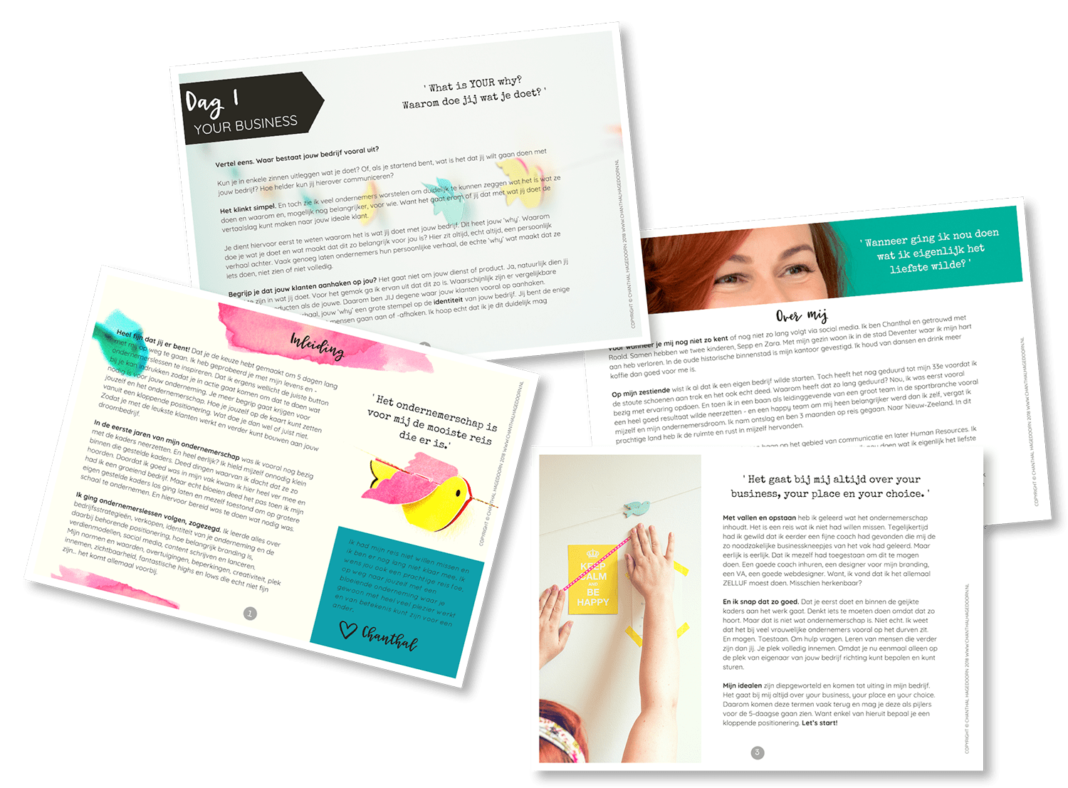 branding chanthal e-book pages resize